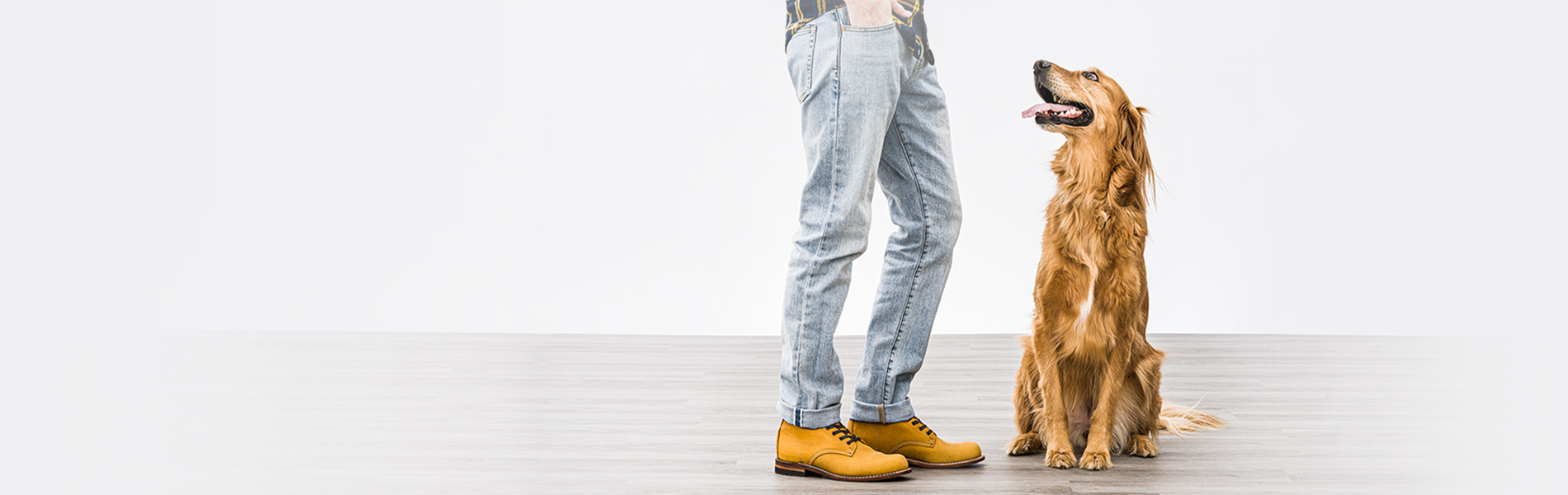 A man and his dog. The color of the man's shoes matches the dog's coat.