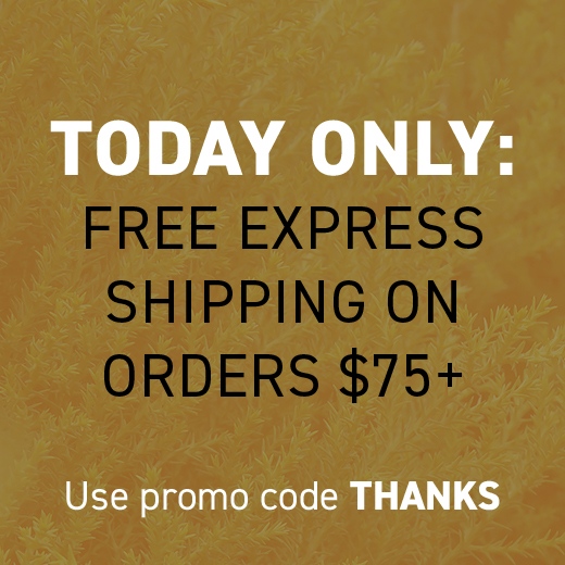 TODAY ONLY FREE SHIPPING